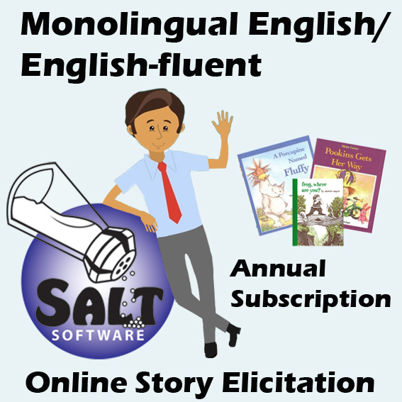 Online Story Elicitation - English
